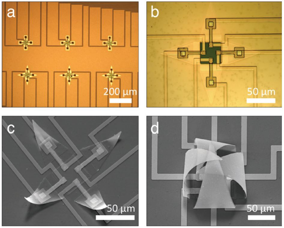 microgrippers cells on chip
