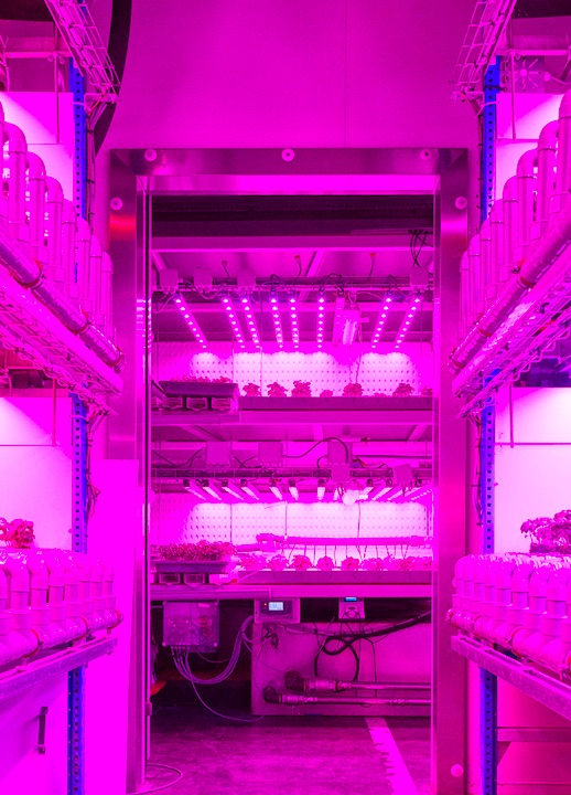 Vertical farming Colruyt