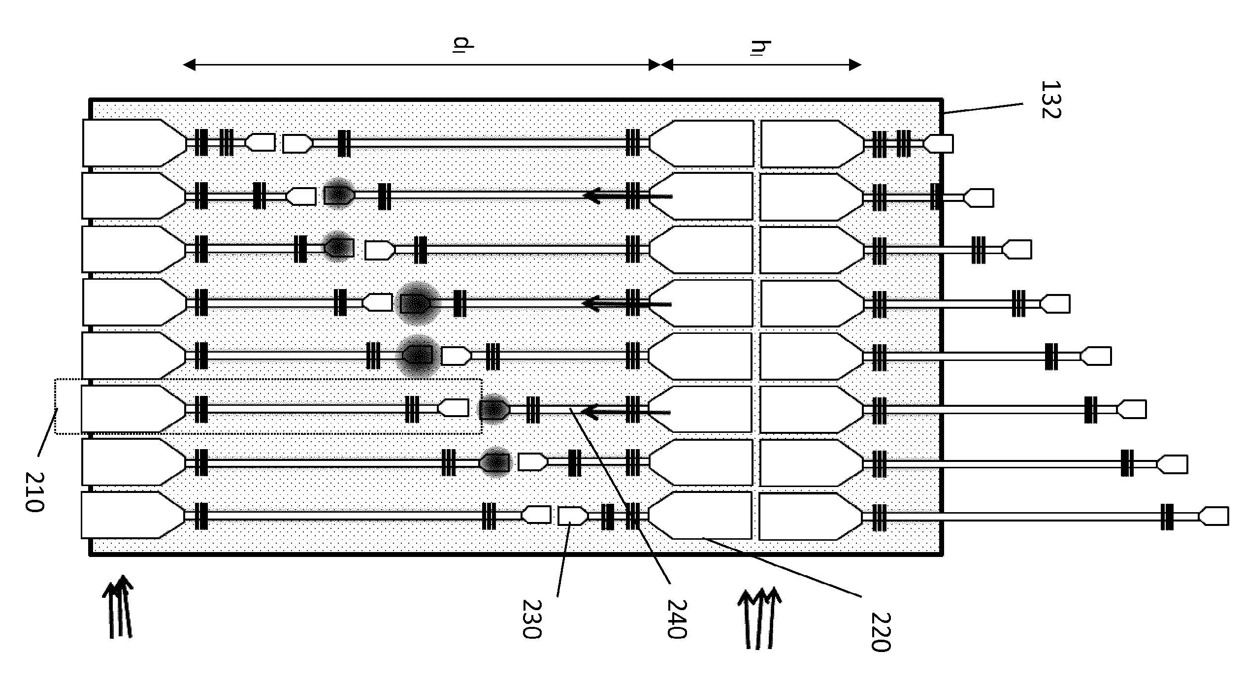 Design of the Raman spectrometer on chip.